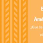 ¿Qué desafíos enfrentan las empresas en América Latina en comercio digital y cómo superarlos?